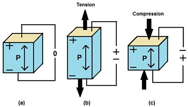 Different piezoelectric responses to applied mechanical stress