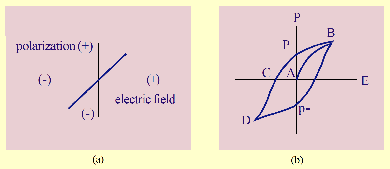 polarization of linear vs ferroelectric dielectrics